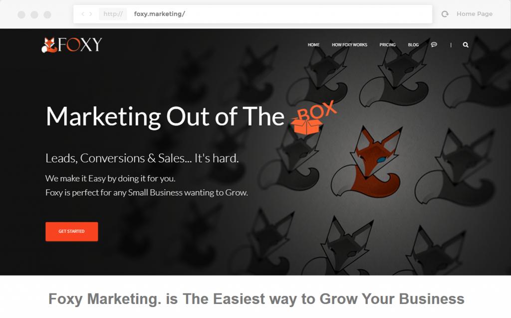 foxy-marketing-mockup-dreamactivate